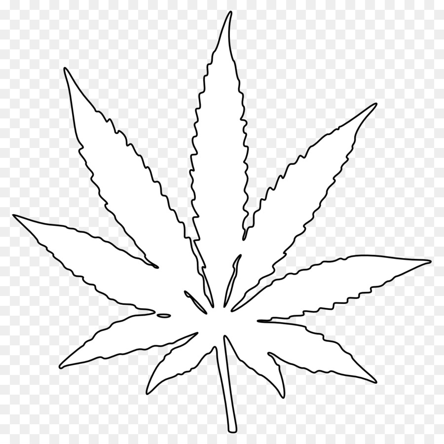 Le Cannabis Feuille Dessin Png Le Cannabis Feuille Dessin