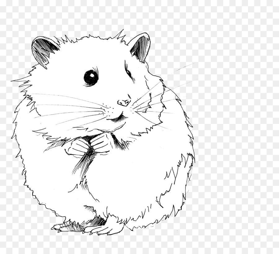 Gerbille Dessin Le Hamster De Roborovski Png Gerbille Dessin Le Hamster De Roborovski Transparentes Png Gratuit