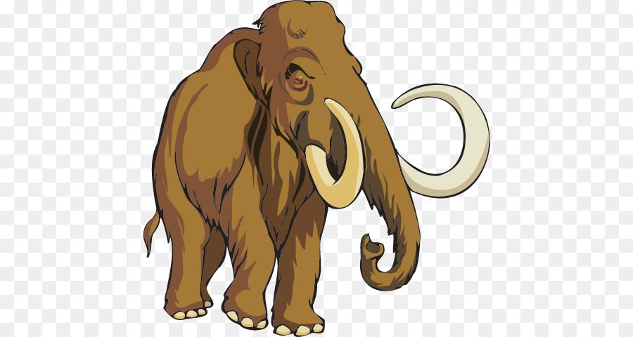 Lelephant Dafrique Lion Mammouth Laineux Png Lelephant Dafrique Lion Mammouth Laineux Transparentes Png Gratuit