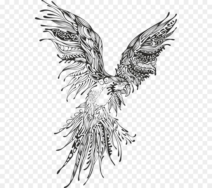 Perroquet Oiseau Dessin Png Perroquet Oiseau Dessin Transparentes Png Gratuit
