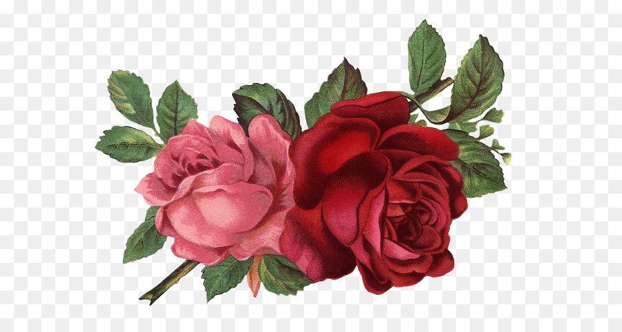 Vintage Rose Clip Art