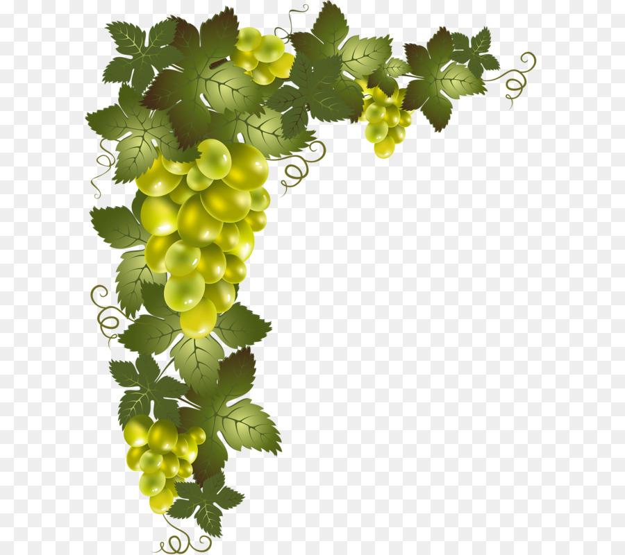 De La Vigne Dessin Découpage Png De La Vigne Dessin