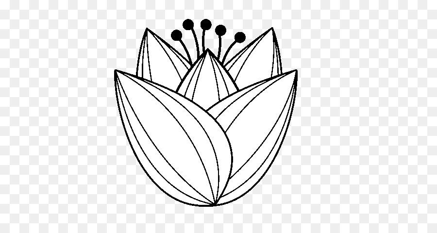 Dessin Livre De Coloriage Tulip Png Dessin Livre De Coloriage Tulip Transparentes Png Gratuit